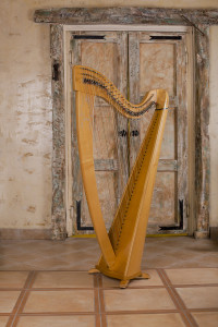 Wired instruments The Harp in the space provided for the performance of musical works